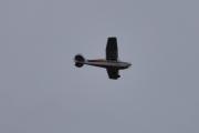 Morten 22 november 2020 - LN-BDO over Høyenhall, det er et Cessna 170B