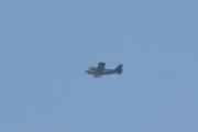 Morten 9 august 2021 - Ukjent fly over hytta i Sandefjord, denne karen her ligner en jeg sliter med på Høyenhall, men han er mye mindre