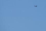Morten 13 juni 2021 - Cessna over Høyenhall, men han her fikk jeg med en fugl da