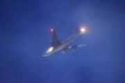 Morten 28 november 2020 - Stort fly på morgenen over Høyenhall