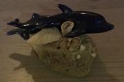 Delfin på sten