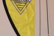 Renault bilflagg